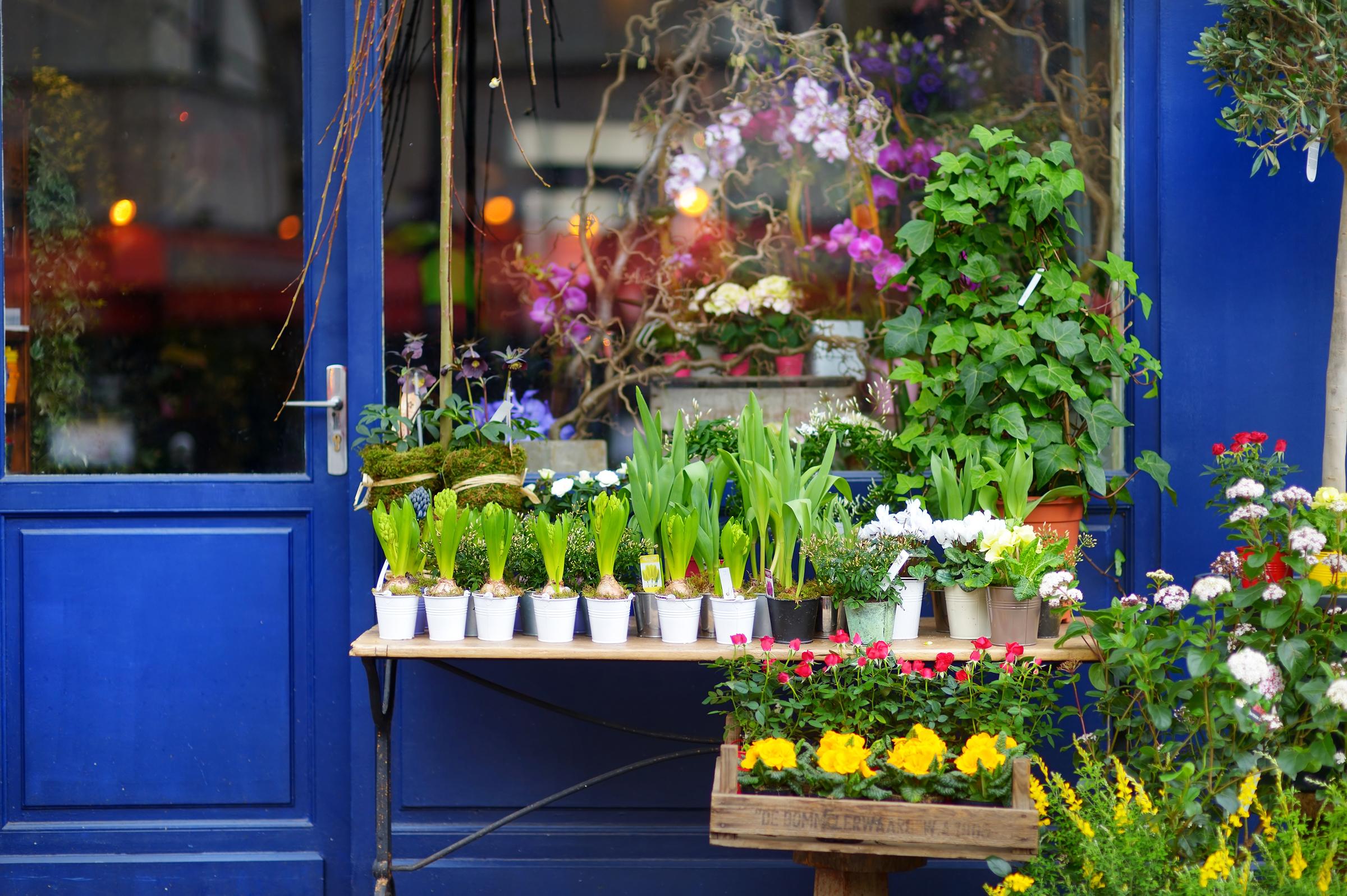 WEB-FLOWER-SHOP-MN-Studio-Shutterstock_257829229
