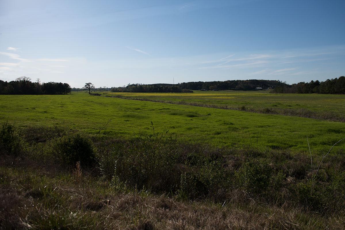 web-hanceville-shrine-fields-jeffrey-bruno-for-ewtn