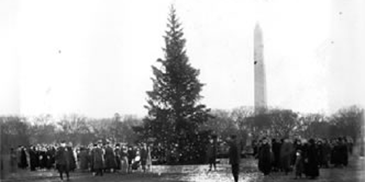 NATIONAL,CHRISTMAS,TREE