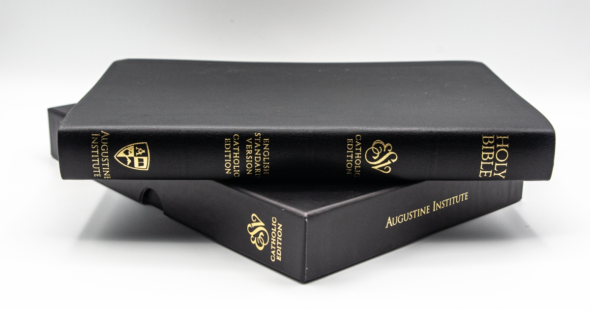 New Bible translation promises greater accuracy